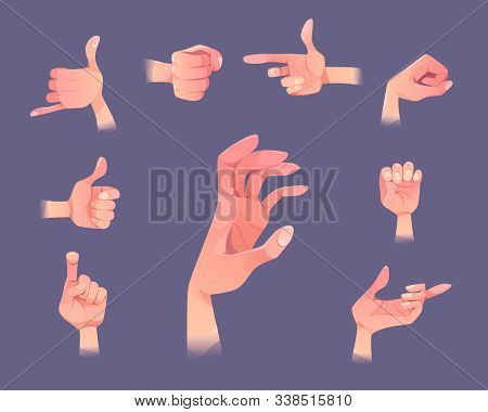 Hand Gestures Set. Human Palm Open And Close Gesturing Positions Point Direction, Show Thumb Up, Fis