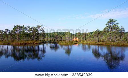 Wild Bog Camping Between The Bog Ponds In Estonia