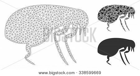 Mesh Flea Model With Triangle Mosaic Icon. Wire Carcass Polygonal Mesh Of Flea. Vector Composition O