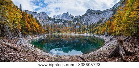 Tree Stumps After Deforestation Near Hinterer Gosausee Lake, Upper Austria. Colorful Autumn Alpine M