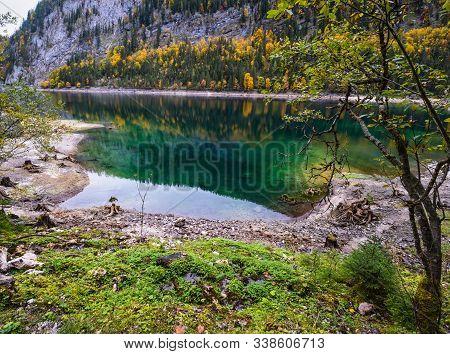 Tree Stumps After Deforestation Near Gosauseen Or Vorderer Gosausee Lake, Upper Austria. Colorful Au