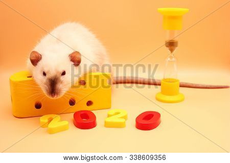 2020 The Number Of The New Year Near A Rat With A Toy Cheese And Hourglass. The New Year Is Coming.
