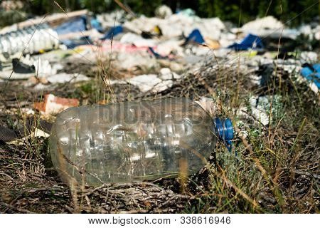 detail of a pile of garbage illegally dumped in an open dump in a forest