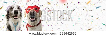 Banner Two Dogs Celebrating Carnival, Halloween, New Year Dressed As A Veterinarian And Hero With Re