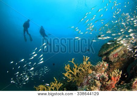 Couple scuba dive underwater coral reef