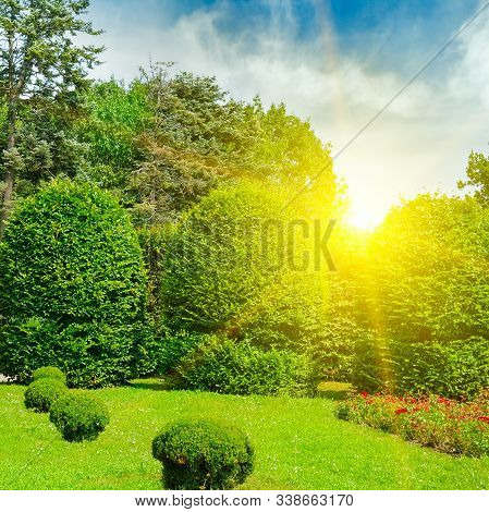 Beautiful Garden With Green Hedges ,with Trees, Alley, Green Lawns, Bright Flower In The Rays Of The
