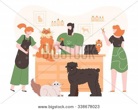 Pets In Grooming Salon. Domestic Dogs And Cats In Coat Care Salon, People Grooming, Washing And Cutt