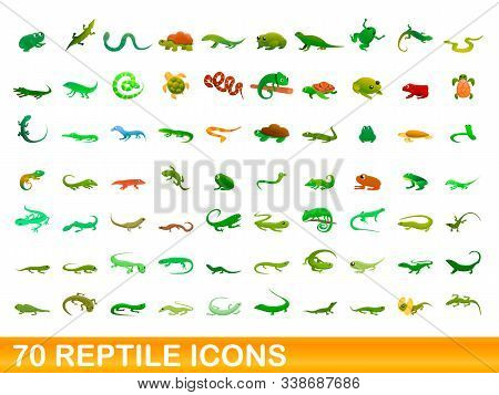 70 Reptile Icons Set. Cartoon Illustration Of 70 Reptile Icons Vector Set Isolated On White Backgrou