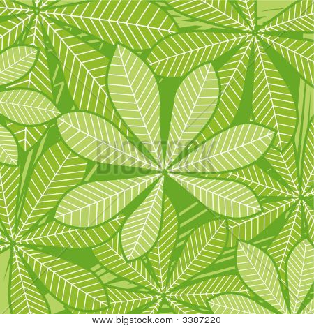 Palm_Leaves.Eps
