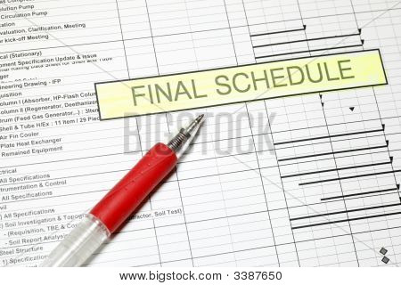 Project Final Schedule