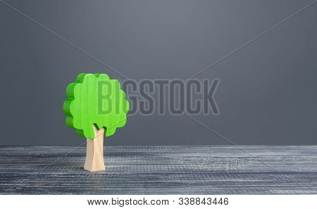 Lonely Tree On Gray Background. Preserving The Environment And Forest Protection. Environmentally Fr