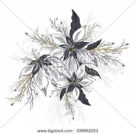 Vector Flower Of Poinsettia And Leaves Isolated On White Background. Realistic Hand-drawn Doodles. M