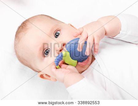 Six month baby girl chewing plastic teething toy lying on her back looking at camera