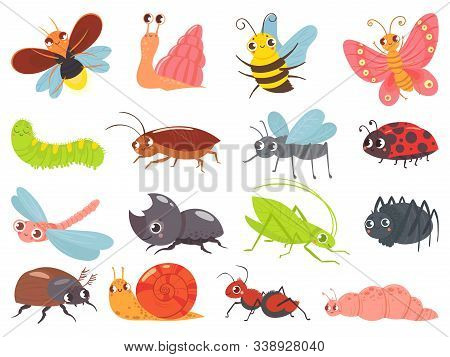 Cartoon Bugs. Baby Insect, Funny Happy Bug And Cute Ladybug. Insects Mascots, Different Bugs Charact