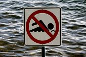 No Swimming Sign set against the waves of Lake Washington near Seattle. poster