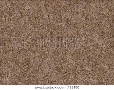 Animal Fur Texture - Rabbit