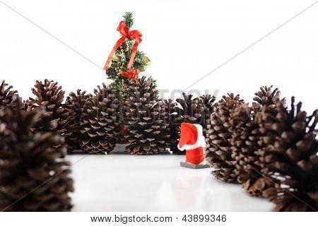 Photo of Christmas tree here I go!
