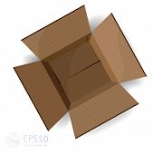 Opened cardboard box. Vector. poster
