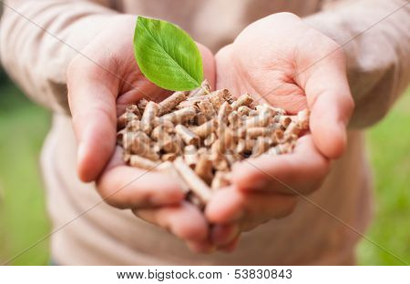 Man holding wooden pellets