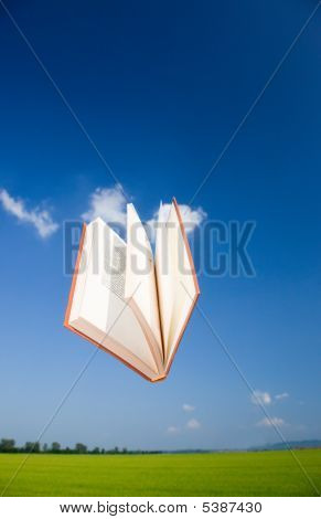 Book Flying In The Sky