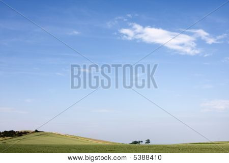 Green Field In Summer With Blue Sky And Clouds