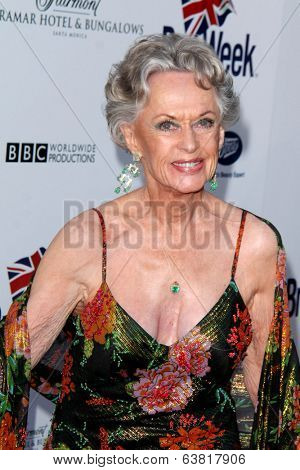 BODHILOS ANGELES - APR 22:  Tippi Hedren at the 8th Annual BritWeek Launch Party at The British Residence on April 22, 2014 in Los Angeles, CA