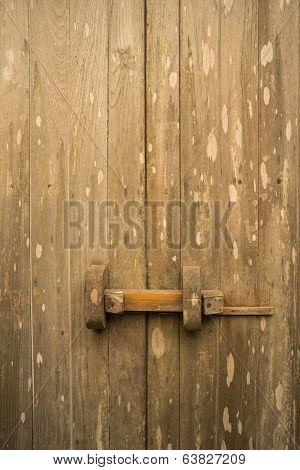 Teak Wood Traditional Door