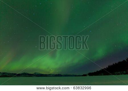 Northern Lights Nightsky Frozen Lake Laberge Yukon