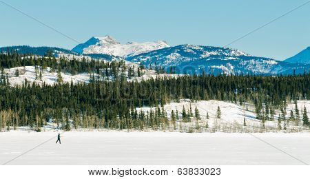 X-country Skier Frozen Lake Laberge Winter Scenery