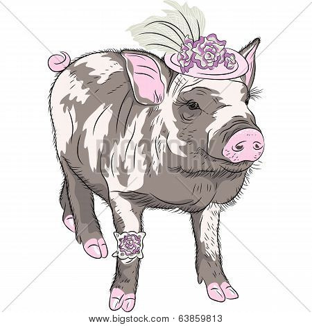 Vector Fashion Funny Piggy In Beautiful Hat Wit Flowers And Garter Of Bride