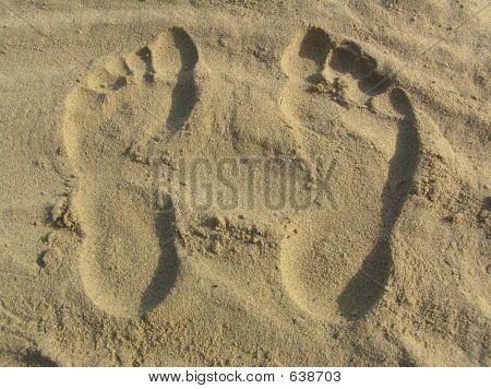 Human Tracks