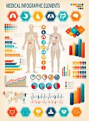 Medical infographics elements. Human body with internal organs. Vector.  poster