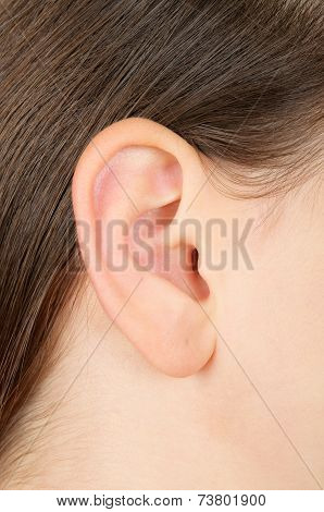 Closeup Of A Brunette Girls Ear