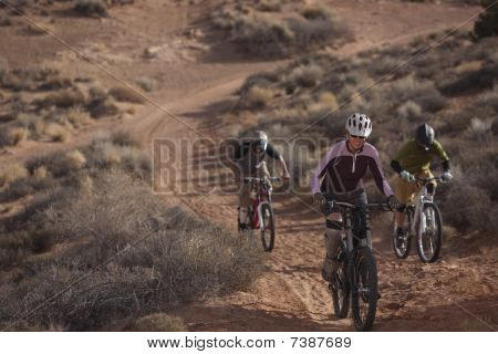 Three People Riding Mountain Bikes