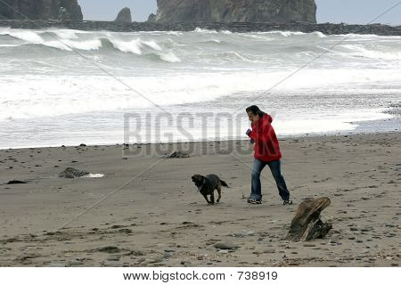 Image of a woman and her dog playing on he beach. poster