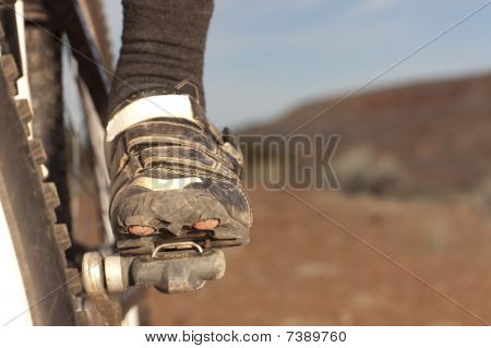 Mountain Biker's Shoe