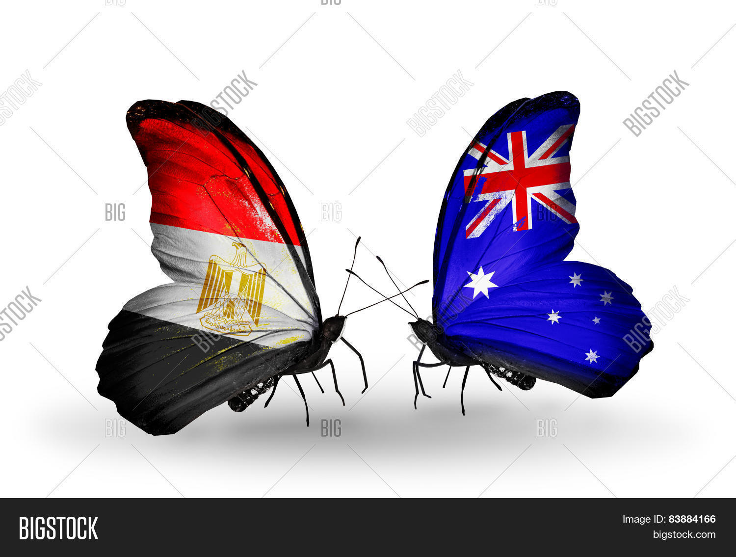Two Butterflies Flags Image Photo Free Trial Bigstock