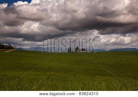 Rural Innisfail