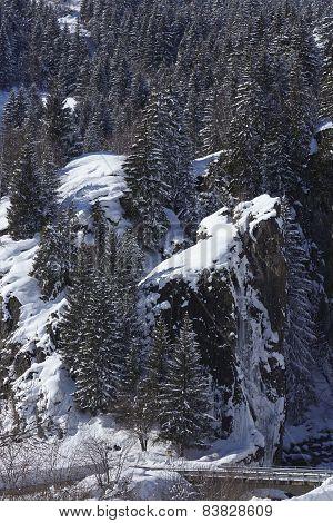Ticino, Switzerland - Winter Landscape With Conifers