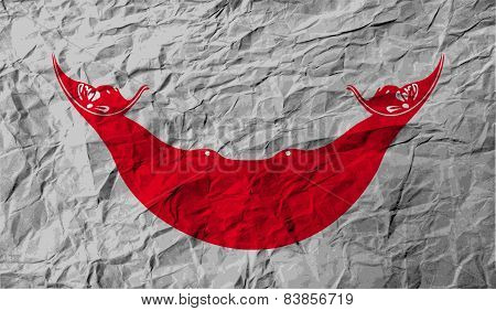 Flag Of Easter Rapa Nui, Chile With Old Texture. Vector