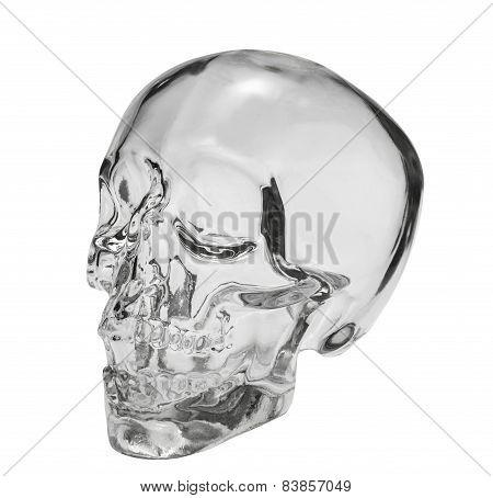 Crystal Head Bottle