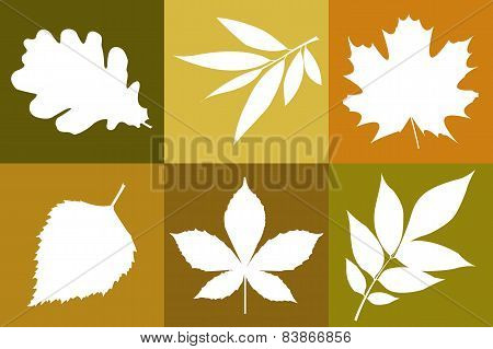 Template Of Leaves