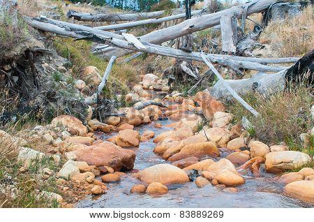 Water Stream Near Sir Lowrys Pass