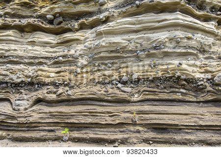 Sedimentary Rock (pyroclastic Deposit)