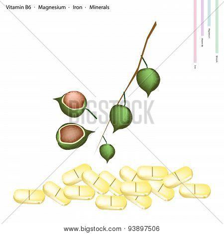 Macadamia With Vitamin B6, Magnesium And Iron