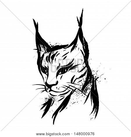 Lynx. Wild cat. Predator. Hand drawn. Black and white. Stylized. Decorative. Vector
