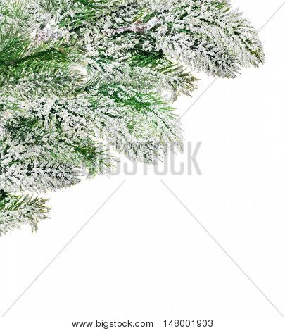 corner from pine tree branches in snow isolated on white background