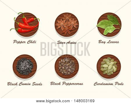 Set of different kinds of spices on wooden board. Collection of condiments - star anise, pepper chili, bay leaves, black cumin seed, black peppercorns and cardamom pods. Realistic vector illustration.
