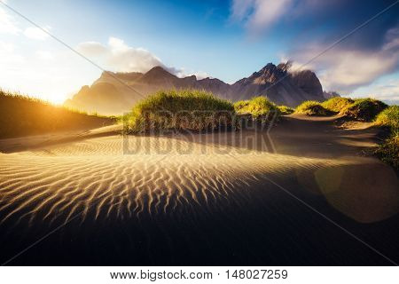 Beautiful view of the yellow hills glowing by sunlight. Majestic and gorgeous scene. Location famous place Stokksnes cape, Vestrahorn (Batman Mountain), Iceland, Europe. Warm toning. Beauty world.