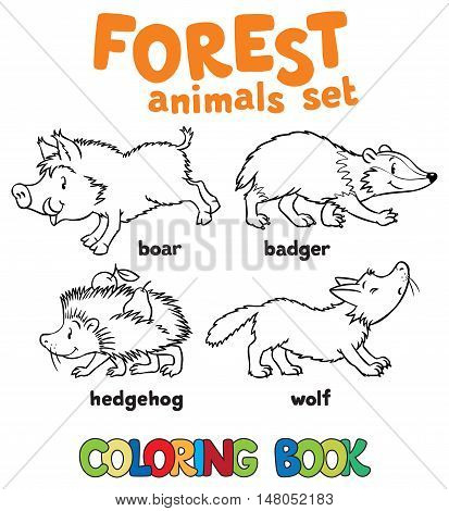 Coloring book set of funny hedgehog, bagger, boar and wolf. Children vector illustration. Forest animals